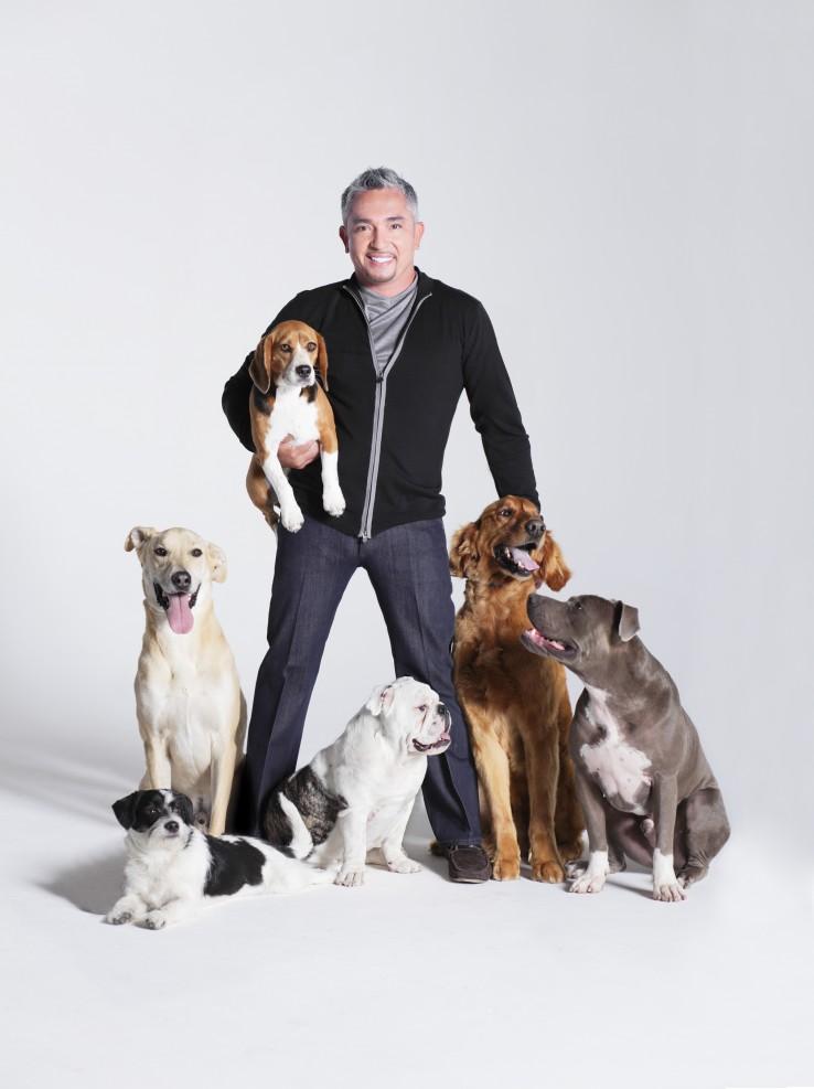 Cesar Millan kutyákkal
